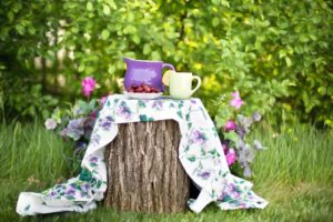 Drink pitchers and fruit on top of a tree stump, with a floral blanket underneath.